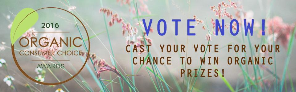 voting-open_2016